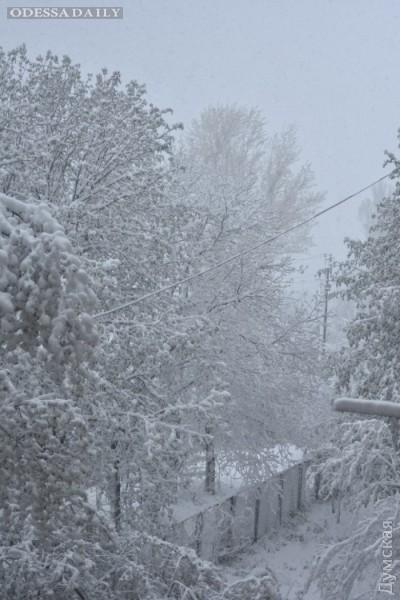 На север Одесской области вернулась зима