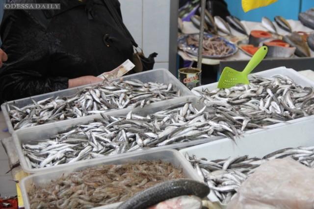 В Керчи переходят с мяса на рыбу