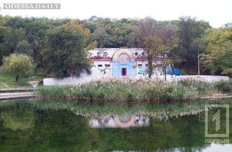 Пруд в Дюковском парке мог стать причиной заражения девушки, погибшей от менингококкового сепсиса