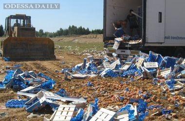 Уже более 350 тысяч россиян просят Путина не уничтожать продукты