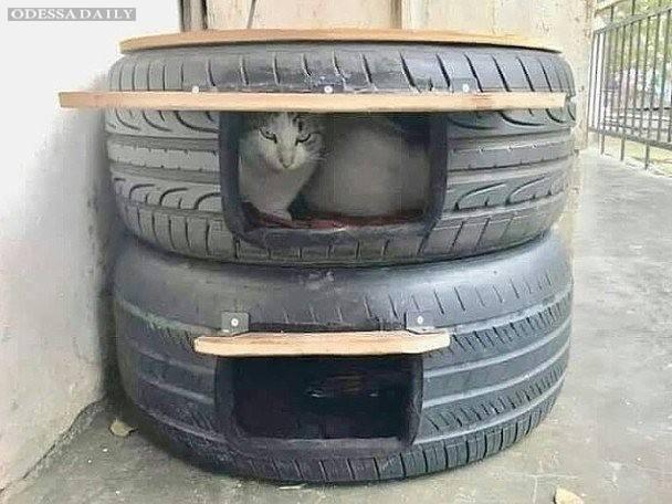 Оксана Прямикова: Домики для уличных котиков от холода, дождя, ветра