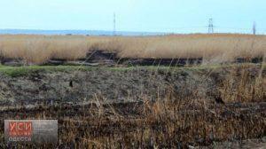 В Одессе снова горела территория станции биологической очистки