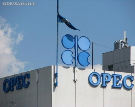 Страны ОПЕК не договорились о снижении объемов добычи нефти