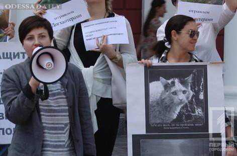 «Не дадим издеваться над животными»: одесские зоозащитники митинговали на Думской площади