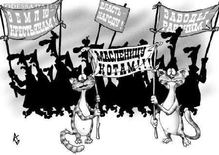 Митинг в Киевском районе, или «Судебной власти - народную реформу!», часть 2