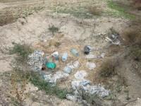 Дмитрий Жданов: Про мусор. Кто виноват и что делать?