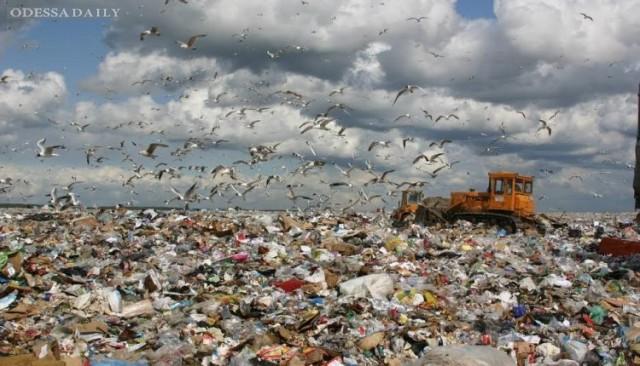 Опасные отходы: на каждой свалке Одесской области нашли нарушения