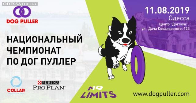 Второй Национальный Чемпионат Дог Пуллер состоится в Одессе