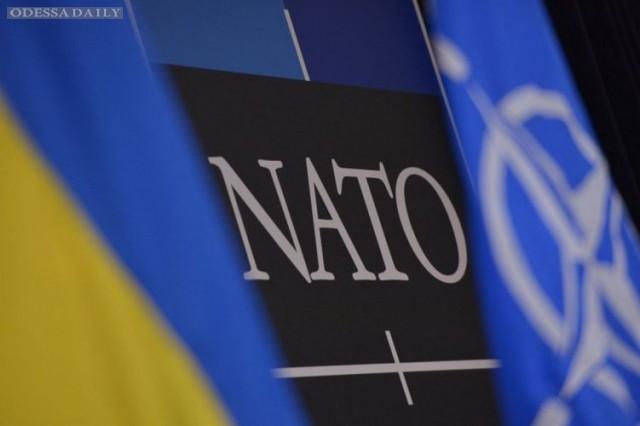 Украина получила от НАТО оборудование для разминирования