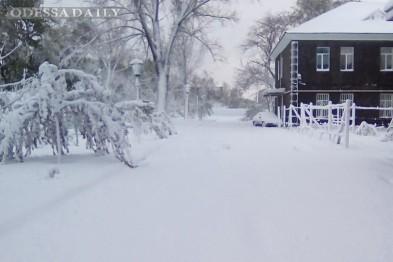 Снежная сказка: как выглядит юг Одесской области сегодня утром