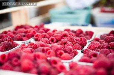 Цены на малину в Украине за год выросли вдвое