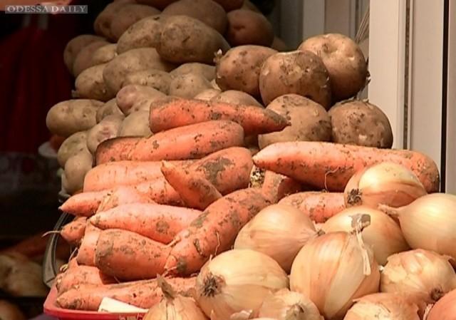 Одесские активисты Партии развития: В Одесском регионе за полгода рост цен на продукты питания составил 20%