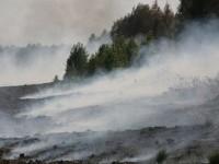 Под Киевом снова загорелись торфяники