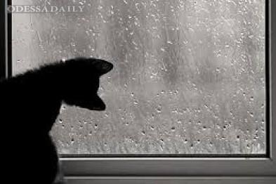 На выходных в Одессе опять обещают дожди и грозы