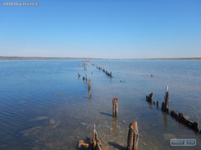 Уровень воды в Куяльницком лимане стал самым высоким за последние 10 лет – ученые