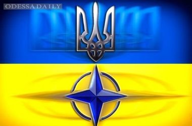 Сегодня Кабмин утвердит программу для вступления Украины в НАТО – Яценюк