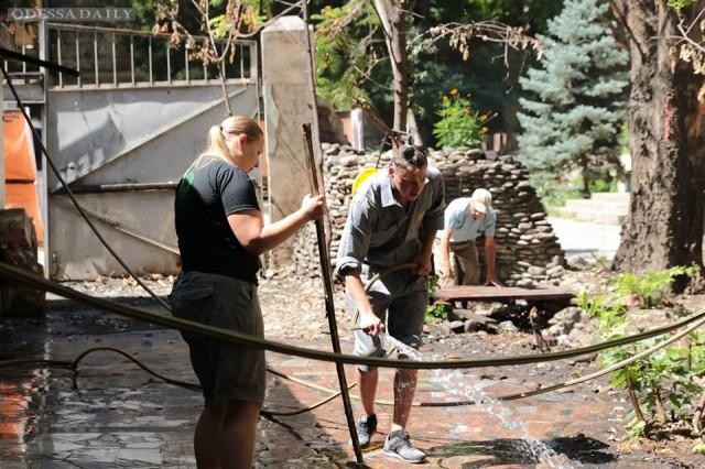 Одесские активисты обустраивают Летний театр
