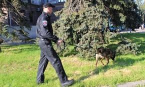 Полиция снова ищет взрывчатку на Куликовом поле