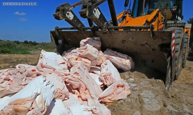 Бульдозером по салу: с 1 января Россия начнет уничтожение продуктов из Украины и Турции
