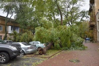 Ураган в Одессе: гибель людей, затопленные улицы, поврежденные дома, рухнувшие деревья