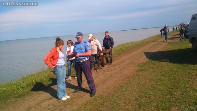 Проблемы национального парка Тузловские лиманы