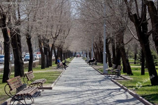 Выходные в Одессе будут ветреными и морозными