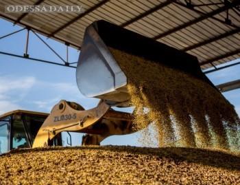 ЕБА поддержала налоговиков в конфликте с экспортерами зерна