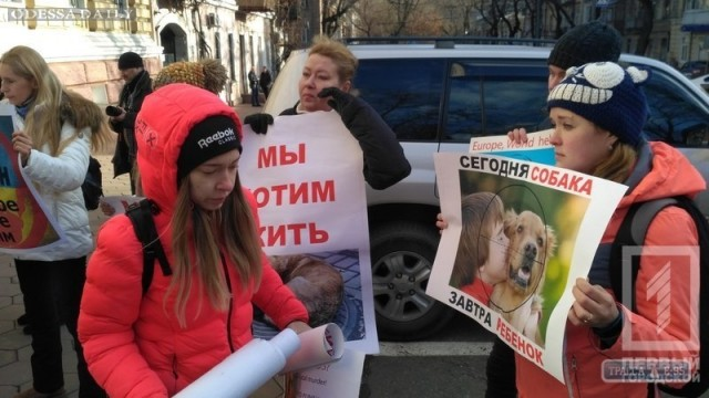 Зоозащитники принесли под здание полиции в Одессе мертвых собак, которых отравили догхантеры