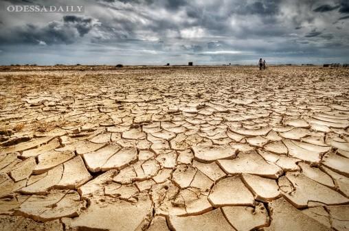 Большая засуха: в реках Украины не хватает воды