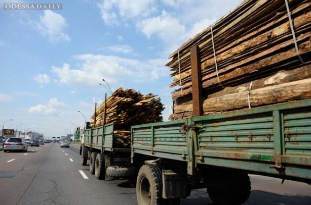 Порошенко подписал закон о моратории на экспорт леса спустя три месяца после его принятия Радой