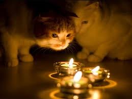 Плановое отключение электроэнергии в Одессе на 23 февраля
