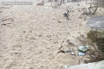 Пляж под Одессой утопает в бытовых отходах
