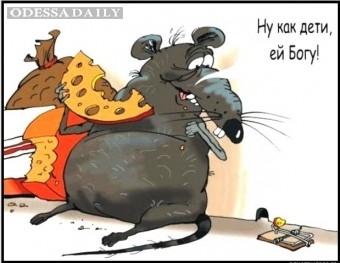 У Лукаш начали обнародовать данные госреестра коррупционеров