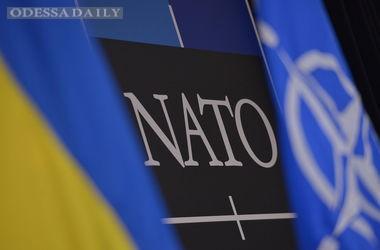 В Украине может появиться центр НАТО по изучению войны с Россией