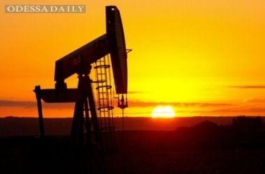 Цена на нефть подскочила выше $31