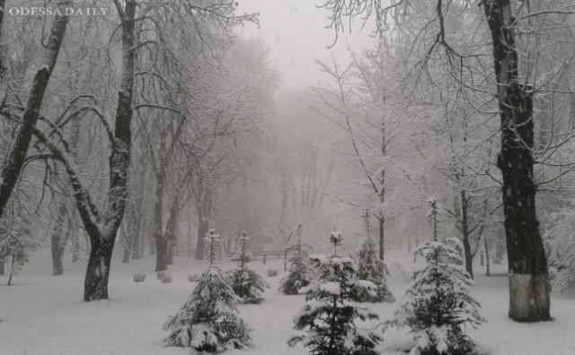 Первые дни нового года будут морозными и снежными