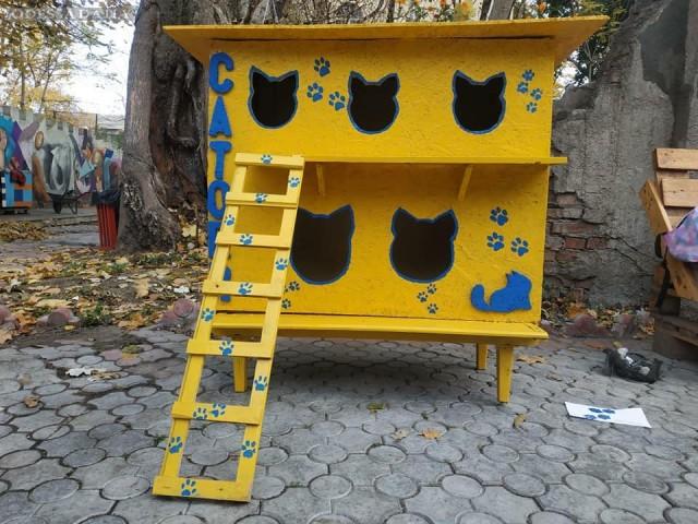 Демьян Ганул: Многоэтажные домики для котиков