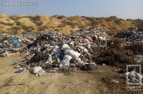 Порылись в мусоре, нашли чеки львовских супермаркетов: в село под Одессой незаконно свозят отходы из западной Украины