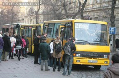 Во Львове появились VIP-маршрутки за 15 грн