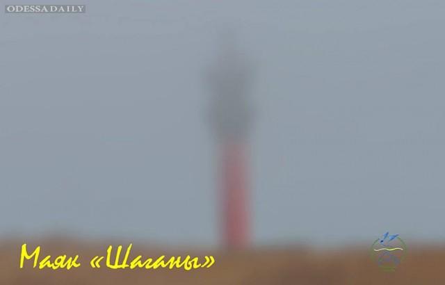 Иван Русев: ОТ ВСТРЕЧИ С ОРЛАНОМ ЗАМЕРЛО ДЫХАНИЕ