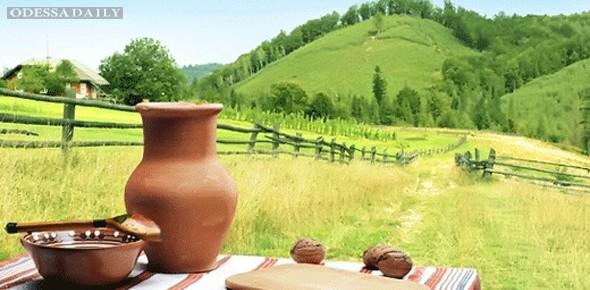 Минагрополитики планирует развивать зеленый туризм в Украине