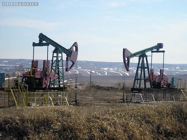 Правительство России готовится к ценам на нефть по $ 25 за баррель – СМИ