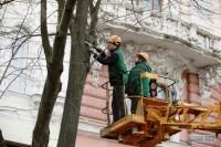 Коммунальщики подрезают деревья в центре Одессы: движение затруднено