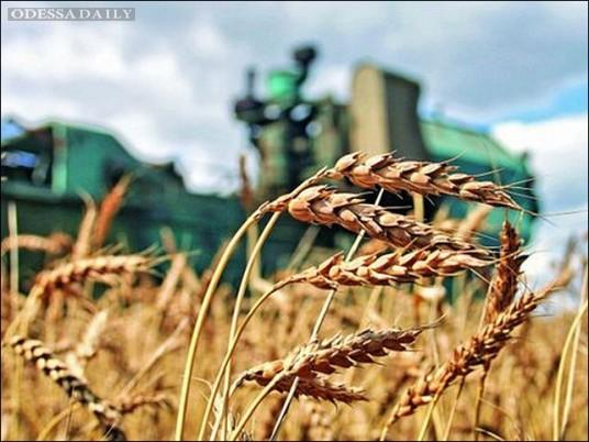 Украинским аграриям нужно объединяться для выхода в ЕС - евродепутат