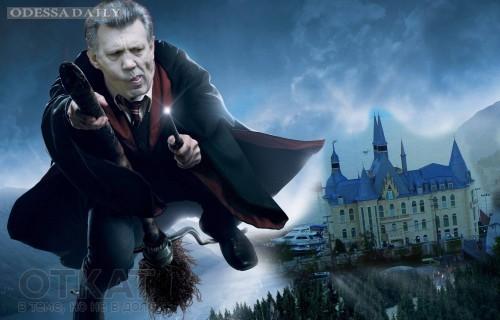 Кивалов оформил свой замок Гарри Поттера на женщину, которая может быть его внебрачной дочерью
