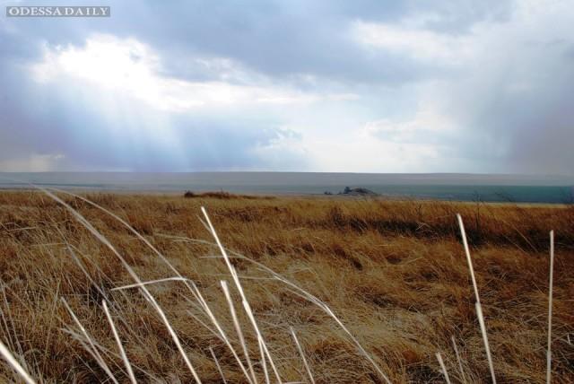 SOS!! Спасти Тарутинскую степь!
