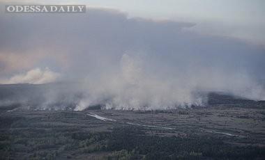 Радиационный фон в Киеве и в зоне отчуждения в норме - Яценюк