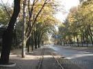Труханов все-таки хочет расширить Французский бульвар: брусчатку обещает сохранить