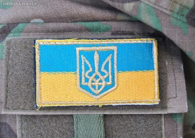 Те, кто не на словах, а на деле способен поднять Украину, сейчас защищают ее от врага - блогер