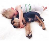 Спящие малыш и щенок покорили Интернет
